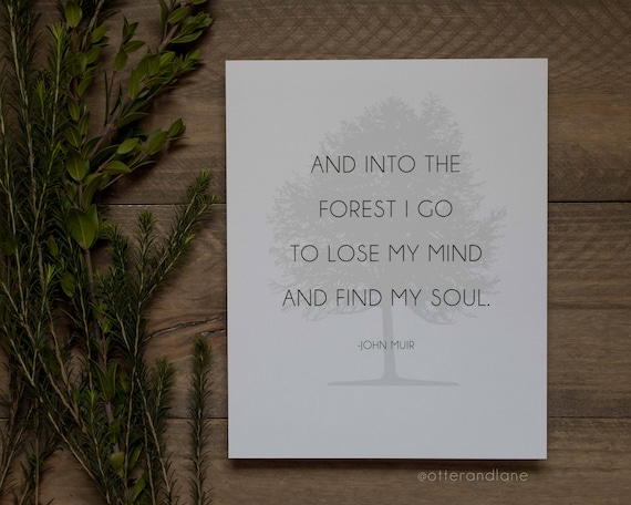And Into The Forest I Go John Muir Quote Paper Print Etsy