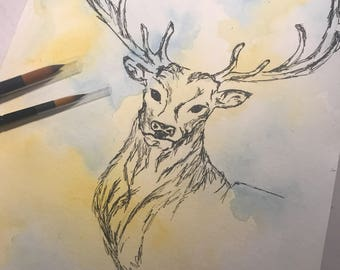 Stag pen and watercolour