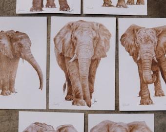 Elephant Art Postcards, A5