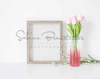 Download Free Styled Stock Photography