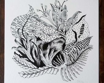 Drawing of botanical plants and flowers in black and white