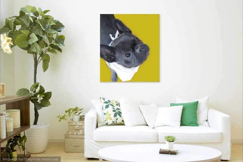 Custom pet portraits digital painting personalized hand drawn pet illustrations for any occasion
