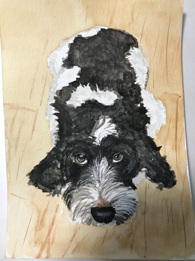 custom watercolor pet portrait Watercolor pet portrait pet portrait watercolor pet painting pet painting custom watercolor pet painting