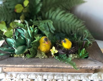"""Faux succulent shadow box with yellow finch - 14"""" x 8"""""""