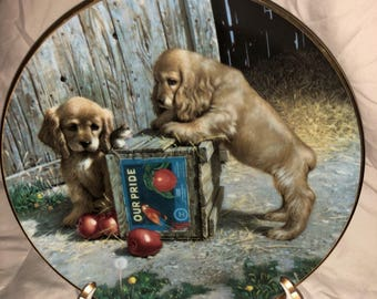 """Vintage Collectors Plate with Puppy Dogs by Knowles """"Double Take"""" by Puppy Playtime 1987 First Edition in Series"""