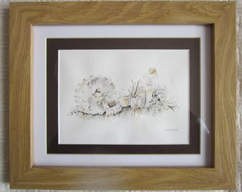 Fungi - A framed original pen and watercolour by Gwen Blyth