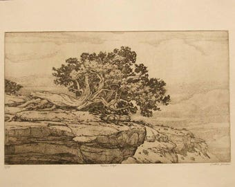 Mesa's Edge  mesa, tree, sepia toned, etching,intaglio, limited edition, signed and numbered, southwest landscape,new mexico, cream paper