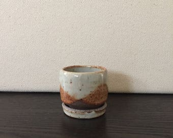 Small Teacup Planter with Garden Kit: Black Mountain Clay with White Shino Glaze