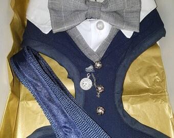 Hochzeits-Anzug Hundegeschirr In Ihrer Hochzeit Farben