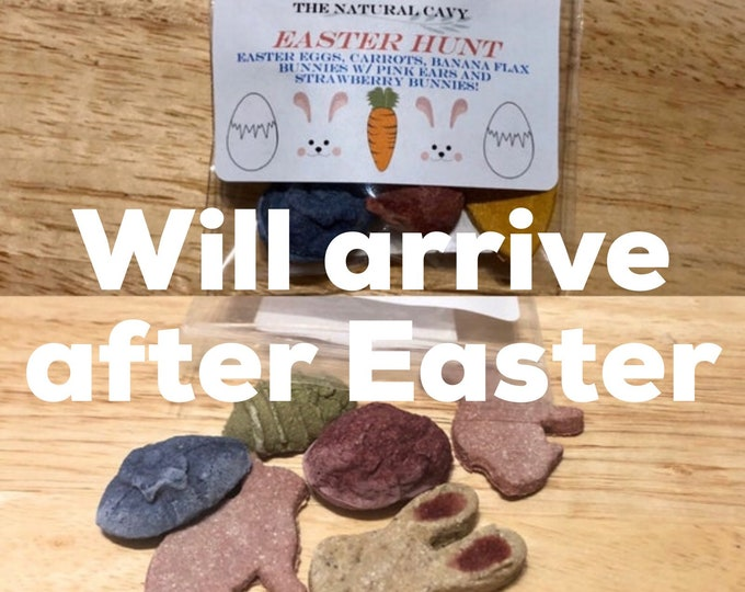 Easter Hunt - Assorted Easter Themed Treats / Guinea Pig Treat / Rabbit Treat