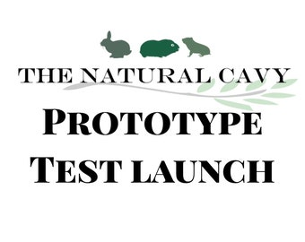TEST LAUNCH our newest product! / Wears Down Teeth / Guinea Pig Treat / Rabbit Treat