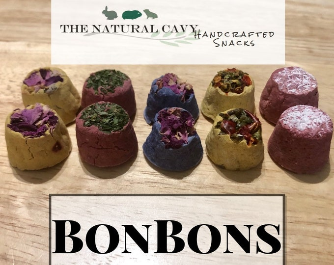 BonBons- Healthy Treats for Guinea Pigs and Rabbits
