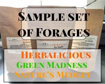 Sample Set of Forages / Hay Topper / Herbal Blend