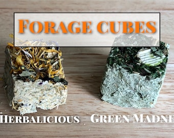 Forage Cubes / Wears Down Teeth / Guinea Pig Treat / Rabbit Treat