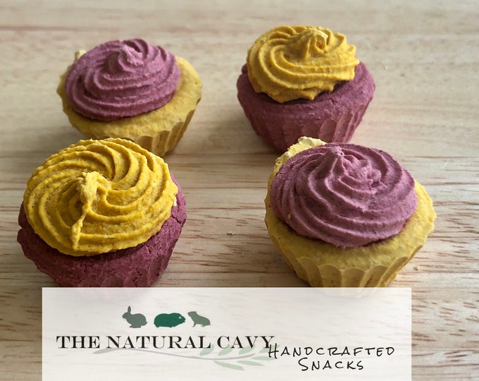 Cupcakes- Birthday, Gotcha Day Gift for Guinea Pigs and Rabbits