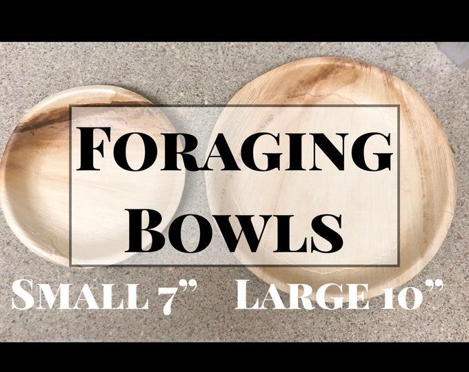 Foraging Bowls