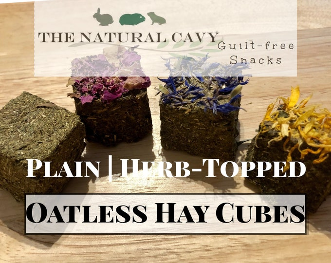 OATLESS Hay Cubes / Hay Wears Down Teeth / Guinea Pig Treat / Rabbit Treat