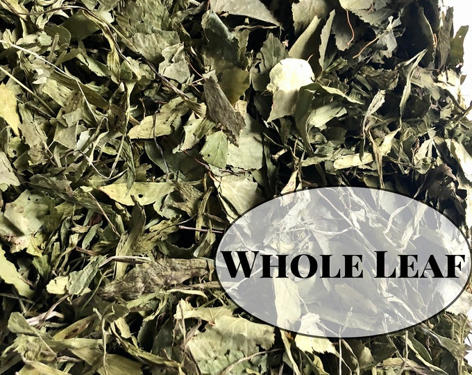 Birch & Plantain WHOLE Leaf Forage / Hay Topper / Herbal Blend