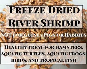 Freeze- Dried River Shrimp - Healthy Treats for hamsters and aquatic animals
