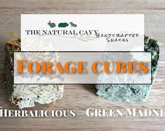 Forage Cubes / Wears Down Teeth / Guinea Pig Treat / Rabbit Treat