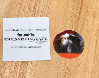 Stickers | The Natural Cavy