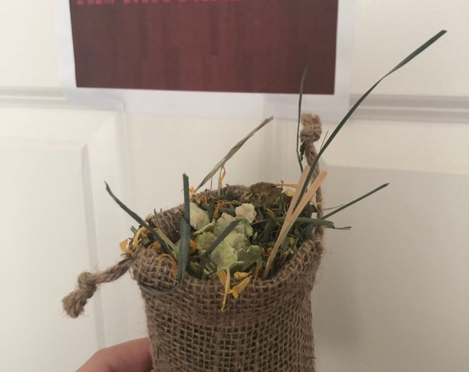 TheNaturalCavy Foraging Pouch