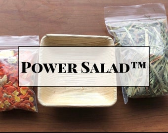Power Salad™ / Healthy Foraging Snack / Boredom Breaker