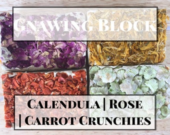 The Natural Cavy Gnawing Block / Wears Down Teeth / Guinea Pig Treat / Rabbit Treat