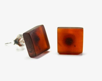 Lot of 5 pair Genuine 100% natural Baltic amber earrings,beautyfull shape, 925 sterling silver stud