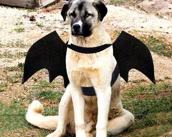 Dog Bat Costume, Halloween Pet Costume, Bat Wings, Cosplay Dog Halloween Party, Pet Accessories