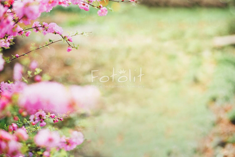 Floral Digital Backdrop Flowers Background Summer Etsy