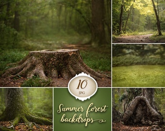 10 Summer forest digital backdrops, spring background, grass backdrop, dreamy backdrops, tree photo, stump, nature, photoshop backgrounds