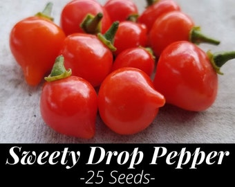 25+ Fresh Sweety Drop Heirloom Pepper Seeds - Red Biquinho Chile - Brazilian, Peruvian (Little Beak / Pearl Pepper) Capsicum chinense43