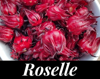 Roselle Seeds - Jamaican Sorrel Seeds - Florida Cranberry Seeds - Hibiscus sabdariffa - Red Zinger - Red Sorrel - Organically grown Seeds