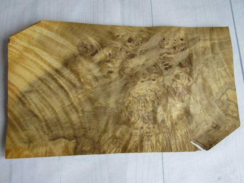 1 sheet Wood Veneer ~37 x 21.4 cm ~14.5 x 8.4 ~0.55mm ~145 Laurel Burl