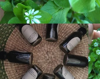 Chickweed Oil