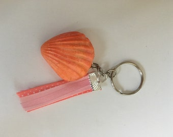 Door celf shell pink and orange