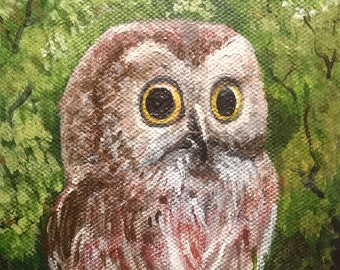 Saw Whet Owl 5x7 Acrylic Painting, Canvas Board, Charming, Nature with lots of Character Unframed Art