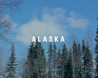 Digital Postcard | Alaska Postcards | Digital Download | Landscape Photography | Tree Photography | Nature Photography | Alaska Art