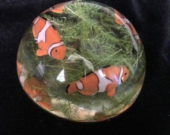 FISH and REAL KELP Resin Paperweight