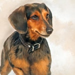 Custom Pet Portraits - Commissioned Portrait Painting - Custom Pet Painting - Fine Art Portraits from Photos - Hand Painted Portraits