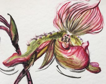 Orchid, Watercolor