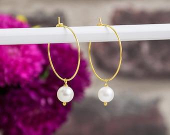 Hoop earrings - classic - fresh water pearl