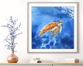 Turtle swimming on blue sea