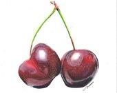 Cherries fine art print. Cherries illustration.