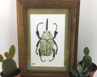 Spotted Hercules Beetle Painting in Natural Wood Frame (Original Watercolor)
