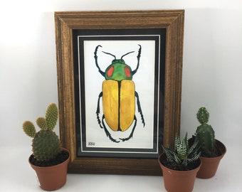 Rainbow Jewel Beetle Painting Version 2 in Natural Wood Frame (Original Watercolor)