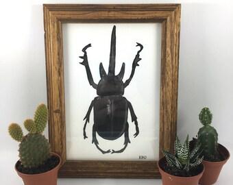 Black Horned Hercules Beetle Painting in Natural Wood Frame (Original Watercolor)