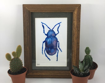 Shiny Blue Beetle Print in Natural Wood Frame (Print)