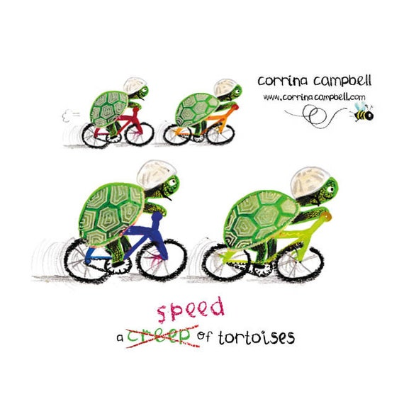 A Speed of Tortoises